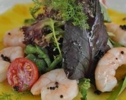 Fotografias del Restaurante Hotel América