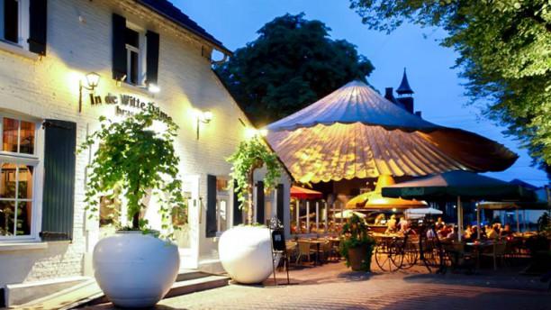 Brasserie In De Witte Dame Ingang - Terras