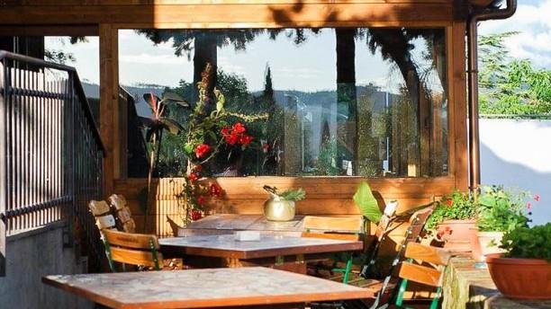 Taverna di Bacco Terrazza