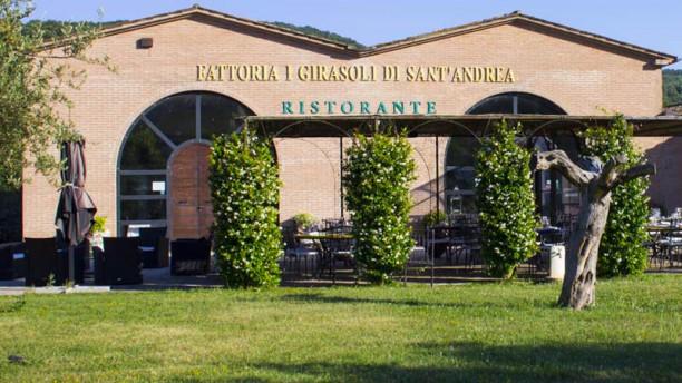 I Girasoli di Sant'Andrea Vista Principale