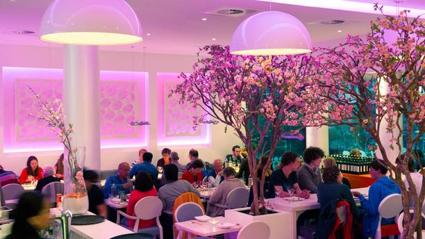 Umami by Han, Den Haag Restaurant