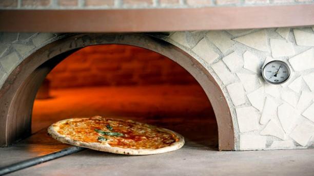Pinocchio Ristorante Pizzeria Sugerencia del chef