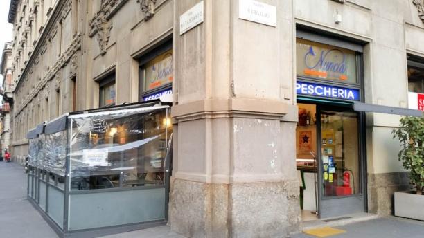 Pescheria Nuncia entrata