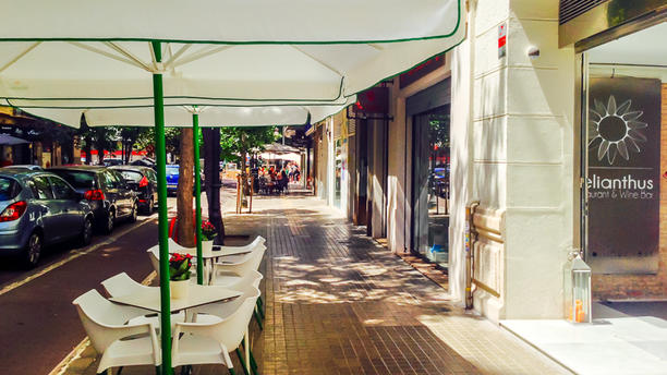 Helianthus Restaurant & Wine Bar Terraza