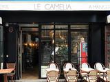 Le Camélia Saint Antoine