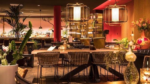 OZZO Oriental Restobar Restaurant