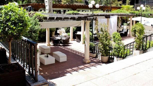 El Jardín del Miguel Angel jardín