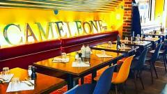 Caméléone Café