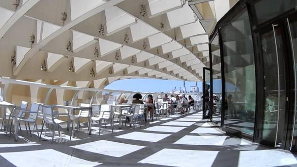 El Balcón de las Setas Terraza