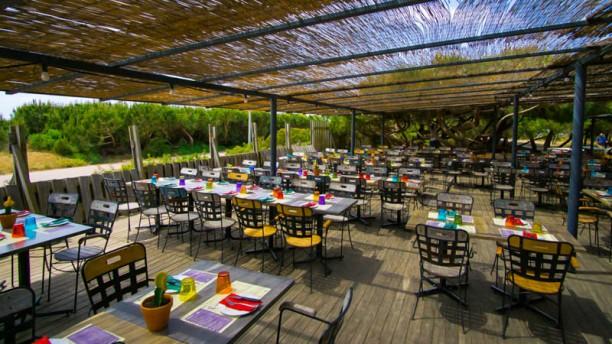 restaurante kauai en gava opiniones men y precios