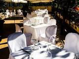 Blanco Cantina & Osteria
