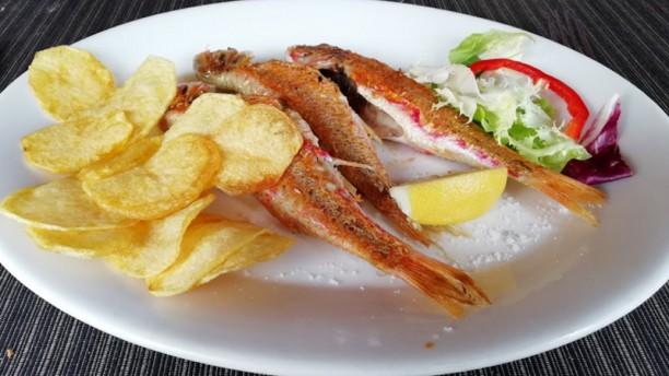 La taverna del peix fregit Sugerencia de plato