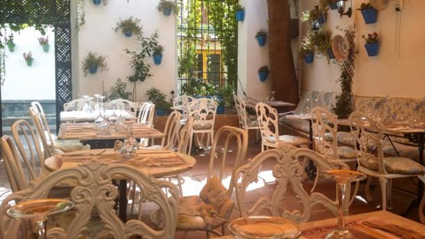 Rincón de Carmen Nuestro patio córdobes