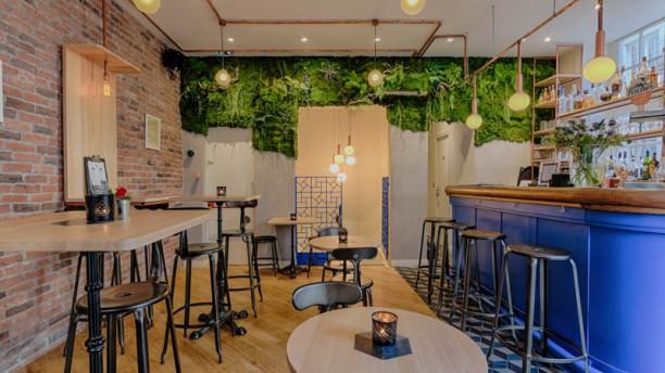 Rainettes Restaurant Paris