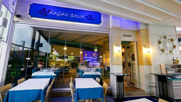 Kaçan Balık Çorlu The entrance