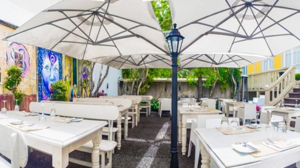 Santa Maria Funchal Terrace Indoor Garden