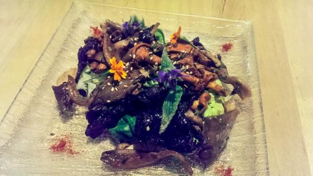Les Gourmands Disent Fricassée aux 5 Champignons et Huile de Noisette
