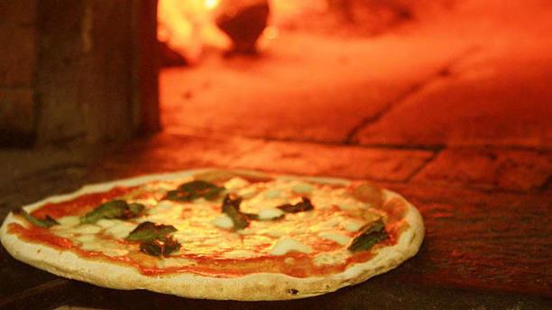 Pizzeria Rocco Pizzeria