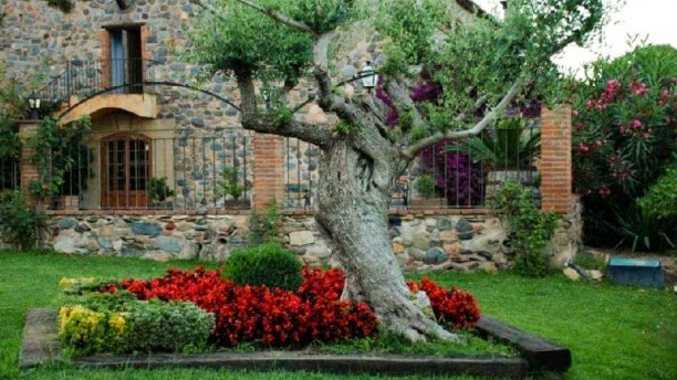 La Bota de Caldes jardin