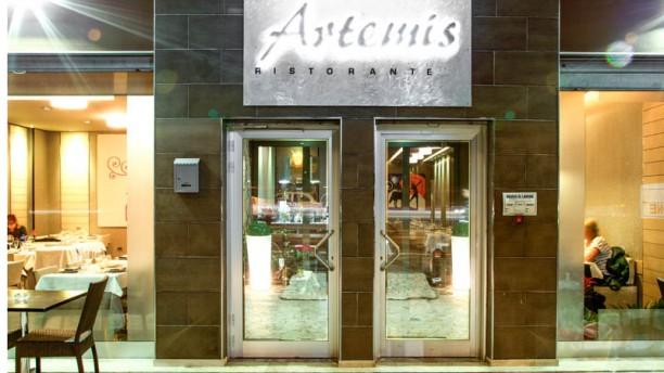 Artemis Entrata