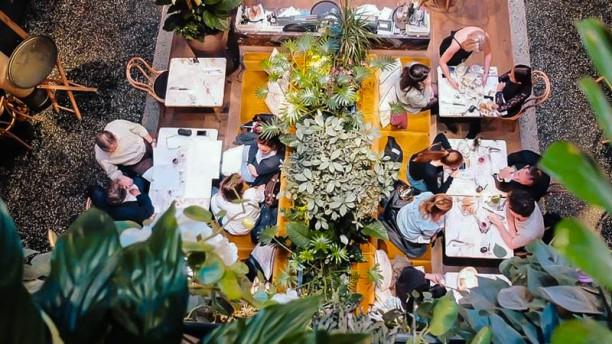 Alcazar Restaurant Terrasse