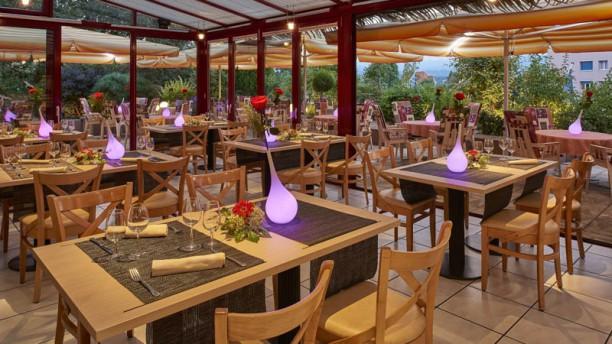 La Terrasse Restaurant La terrasse « Jardin d'hiver »