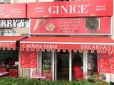 Ginice