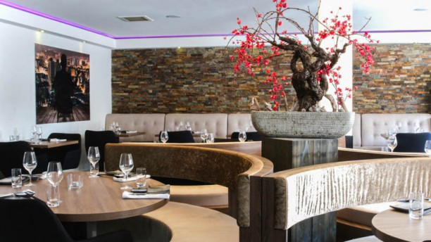 Fusion Design Keukens : Ichi asian fusion cuisine restaurant in kaatsheuvel restaurant