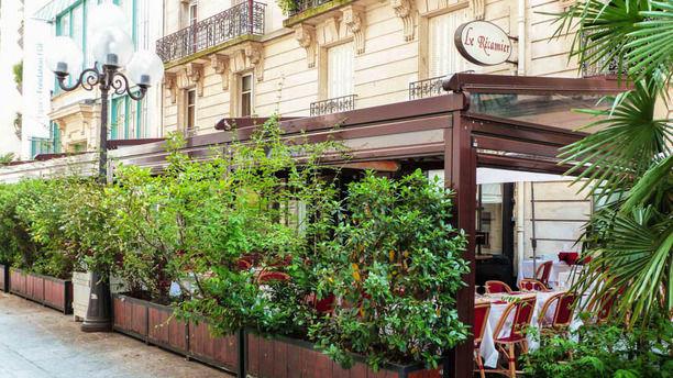 la cigale recamier in paris restaurant reviews menu and prices thefork. Black Bedroom Furniture Sets. Home Design Ideas