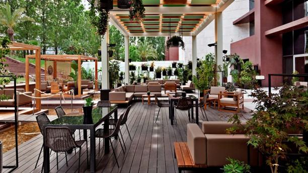 Soul Garden Esplanada