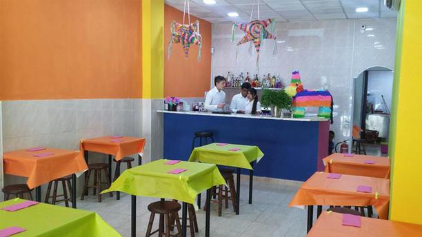 El Burrito Kahlo Vista Sala