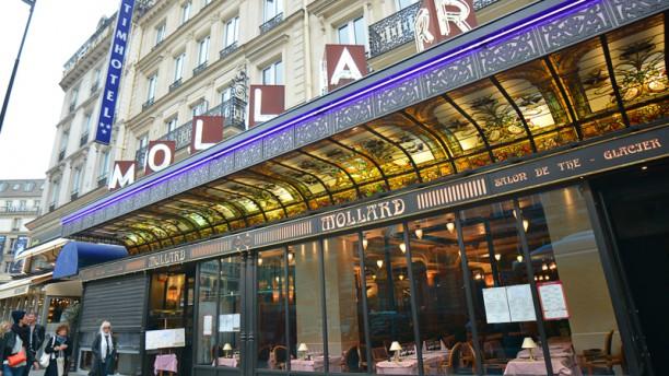 Brasserie Mollard Brasserie parisienne