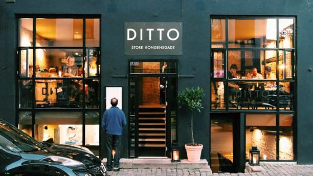 Ditto store kongensgade Restaurangens front