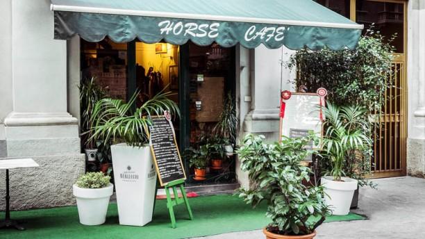 Horse Cafè esterno