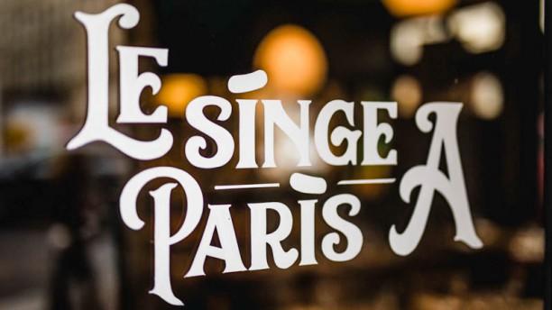 Le Singe A Paris Le Singe A Paris