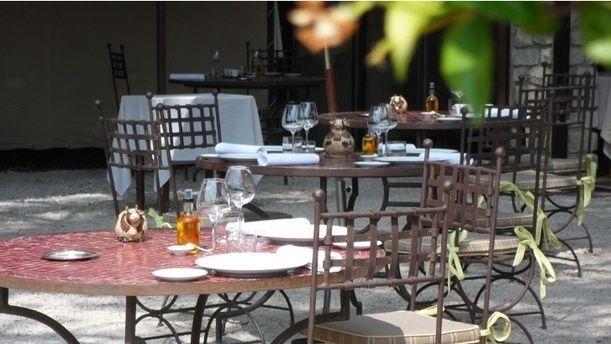 Le Saule Pleureur - Laurent Azoulay Zoom sur la terrasse