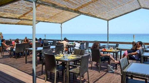 Restaurant orizonte la paillote cervione 20221 avis for Restaurant la cuisine dax