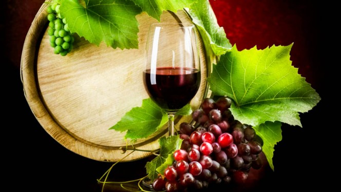 Various selection on Wine - Fishtail Restaurante, Lisboa