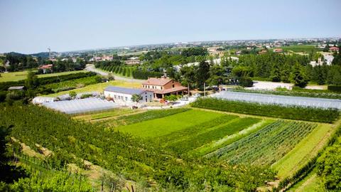 Agriturismo Perugini, Cesena