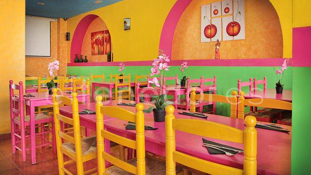 Burro Chilango sala con muchos colores