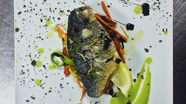 La Terrazza In Belvedere Marittimo Restaurant Reviews