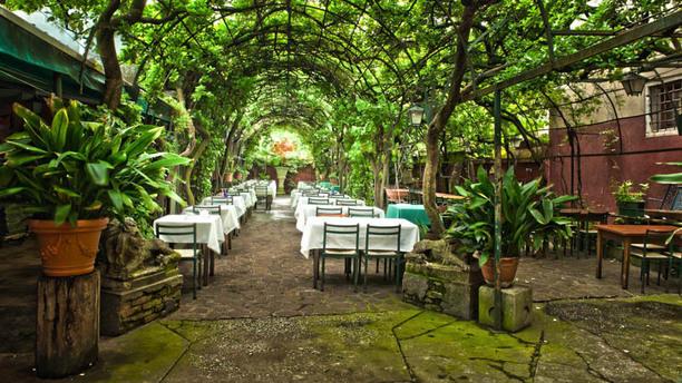 Antica Locanda Montin Giardino