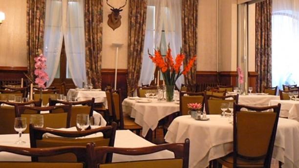 Grand Hôtel du parc Vue de la salle