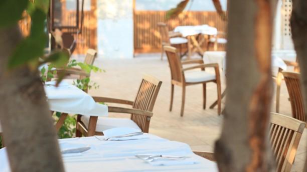 Rue De La Guirlande Marseille on dine - restaurant, 22 rue de la guirlande 13002 marseille