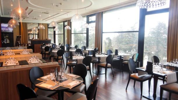 Casino le lion blanc restaurant saint-galmier poker strategies for beginners