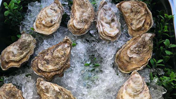 Bar Parada ostras frescas