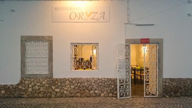 Oryza entrada