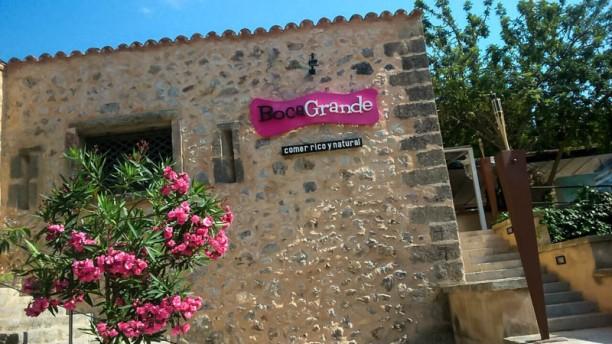 Boca Grande Mallorca Vista entrada