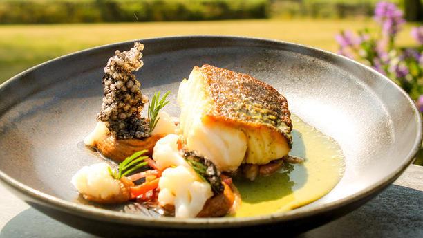 Havezathe Hotel-Restaurant Carpe Diem Suggestie van de chef