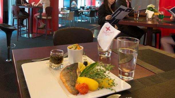 Starling Café Filet de bar